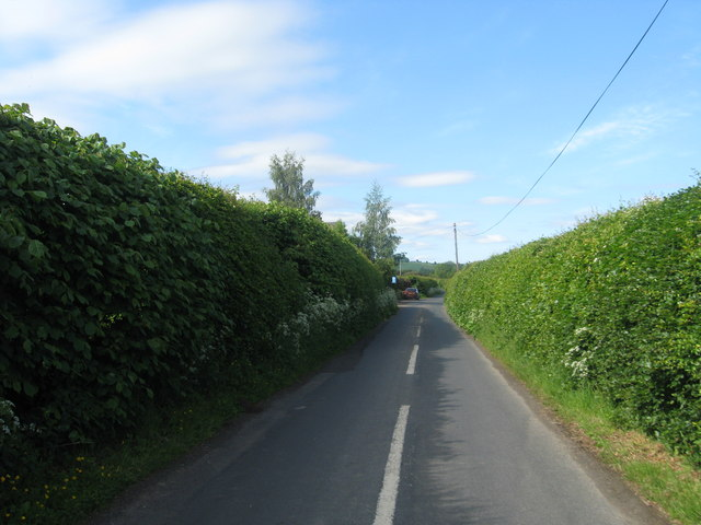 A country lane running parallel with the Rule Water