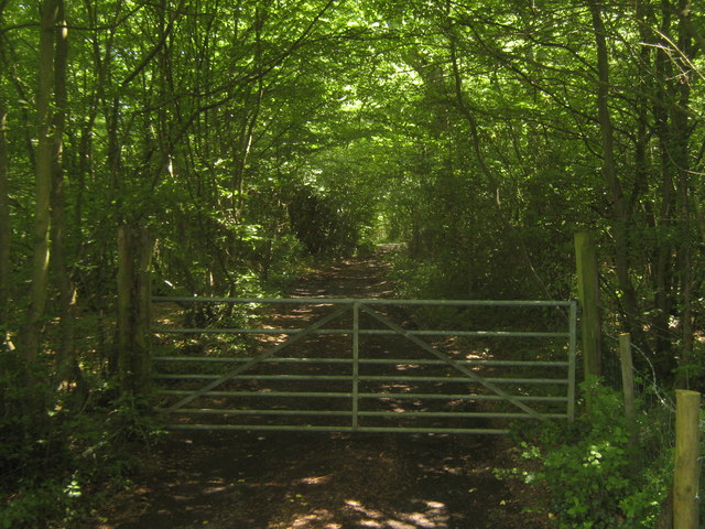 Gate and track into Great Heron Wood