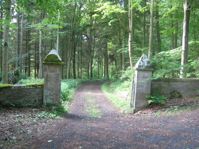 Grand entrance to the woods
