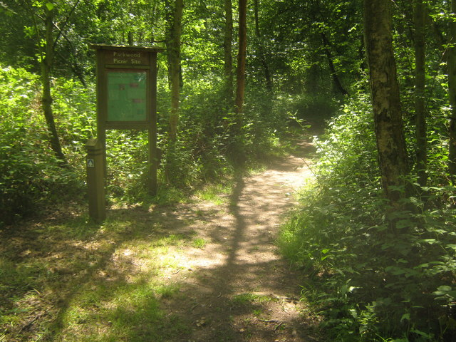 Parkwood Oak and Bluebell Walk