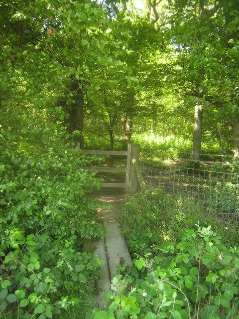 Stile and footbridge near Park Wood