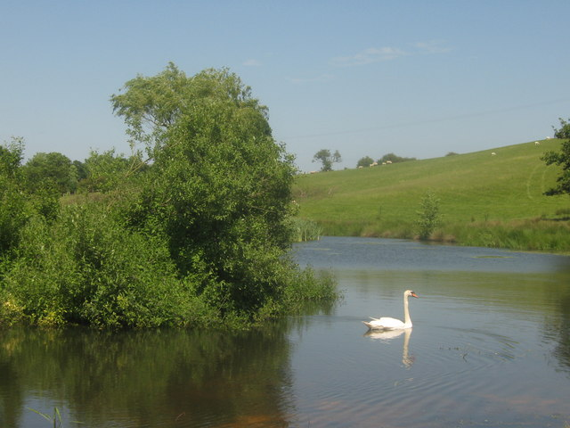 Pond near Hornes Place