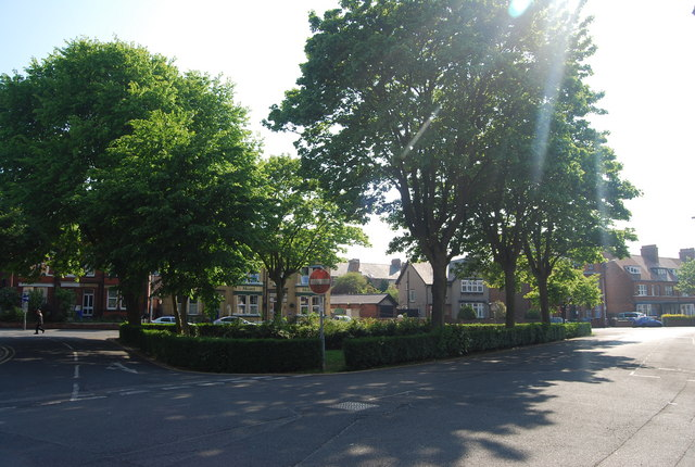 Wooded triangle: junction of Vernon Rd and Trinity Rd
