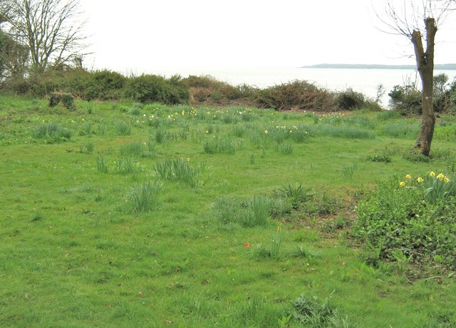 Grassy area between Kirkdale Port and the beach