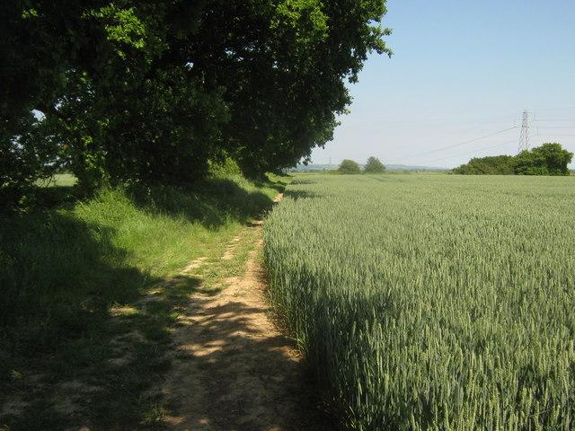 Saxon Shore Way heading to Kenardington