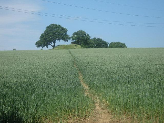 Saxon Shore Way towards a tumulus near Hornes Place