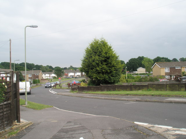 Looking from Cunningham Road towards Boyle Crescent