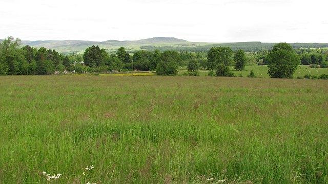 Hay meadow, Kilmarnock House