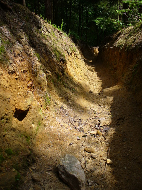 Incised Footpath, Pitch Hill