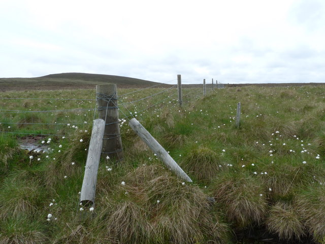 Fence below Caplaich Hill