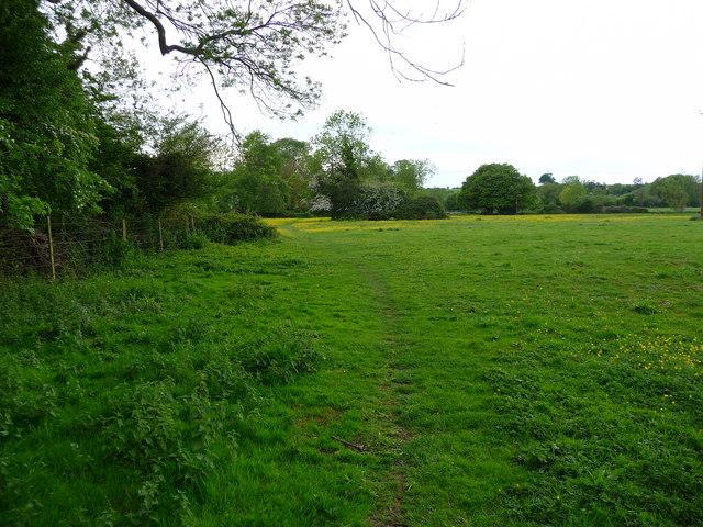 Chilbolton - Field