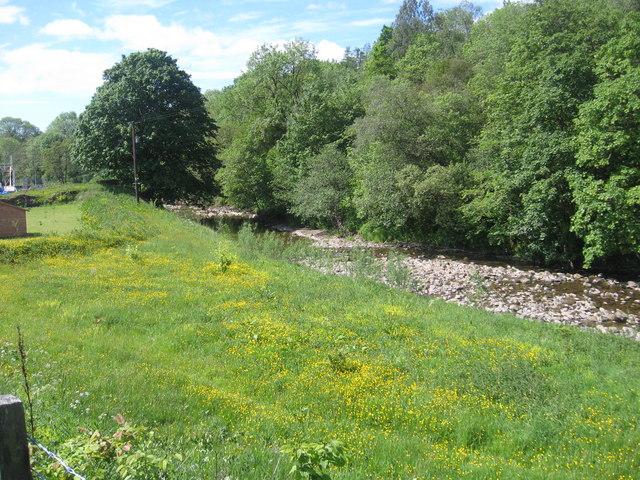 The Liddel Water near Hewis Bridge