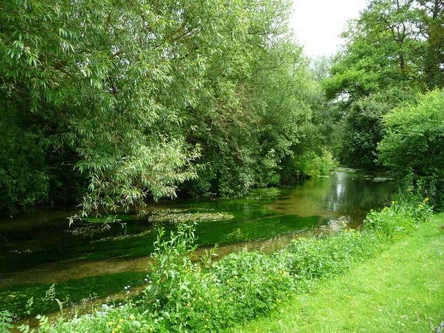 Bransbury - River Test