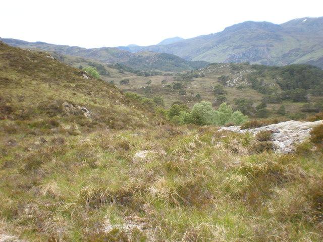 Moorland below northern grags on Carn nam Barran