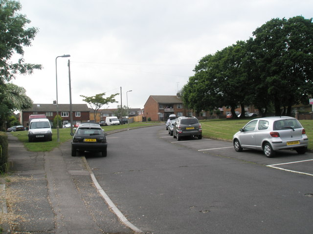Bend in Cunningham Road