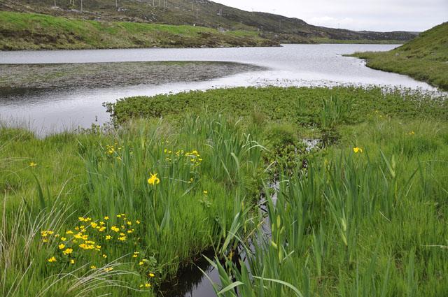 Loch Shobhail