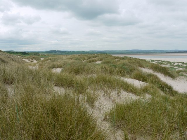 Sand dunes at Budle Point