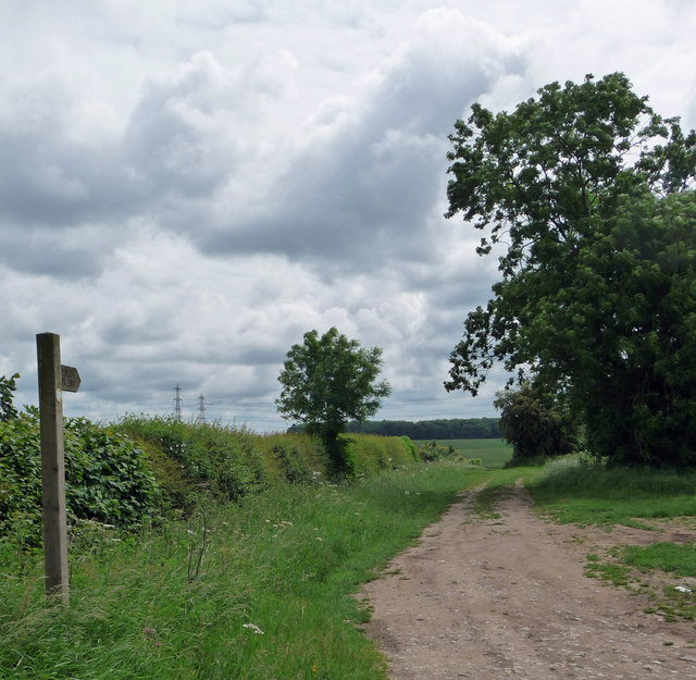 Footpath towards Turton's Covert