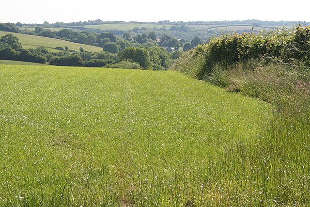Stoodleigh: towards Rifton Moor