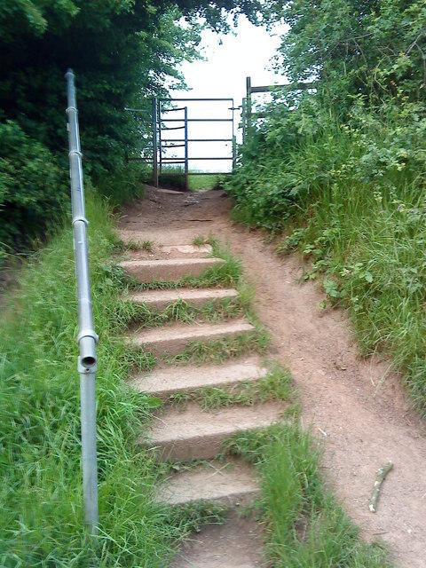 Steps through the hedge