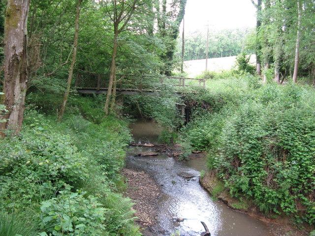 Footbridge in Prestwick Copse