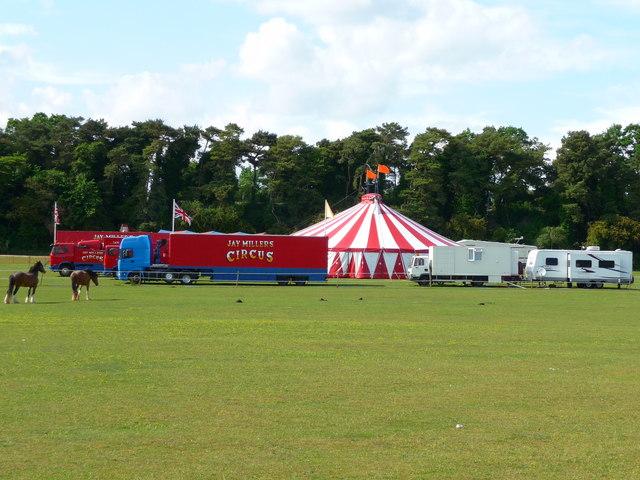 Picket Piece - Circus