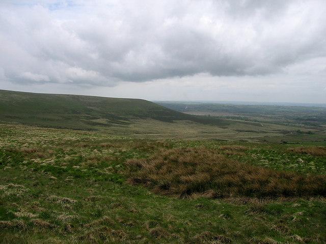 Preseli ridge near Carn Bica