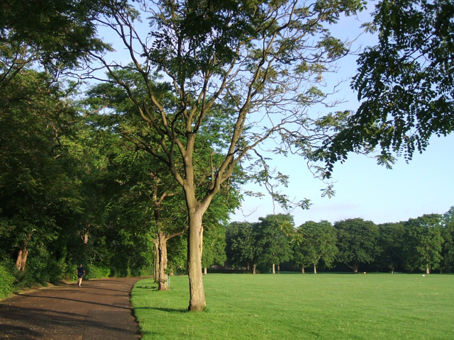 Early morning jog, Victoria Park