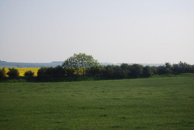 Pasture land near Lingholm Farm