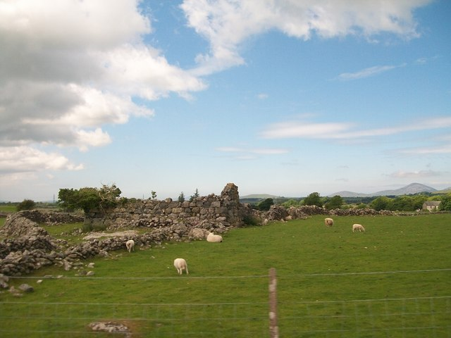 Ruined barn in sheep pastures