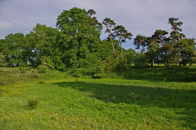 Former pond
