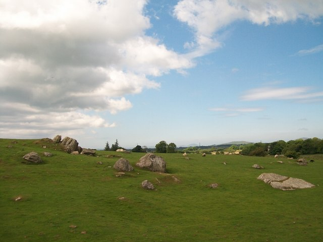 Rock outcrops in sheep pastures