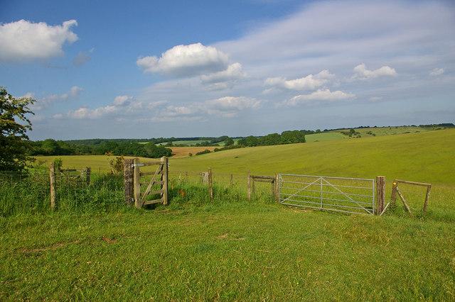 Field corner north of Draycott Hill