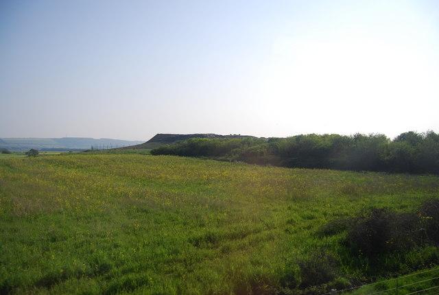 Farmland near Seamer