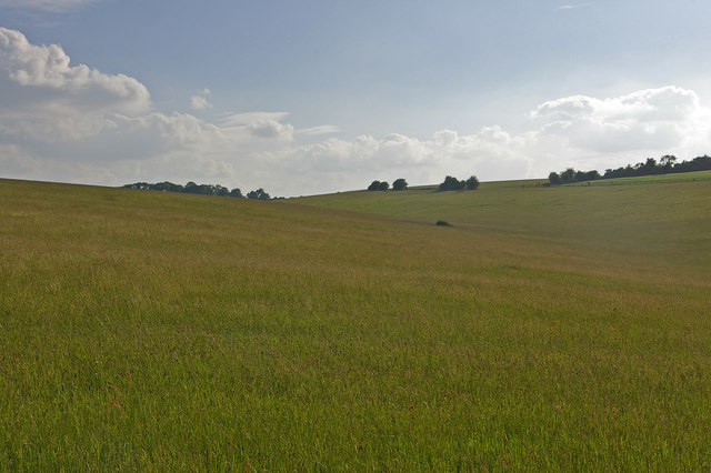 Grassland north of Draycott Hill