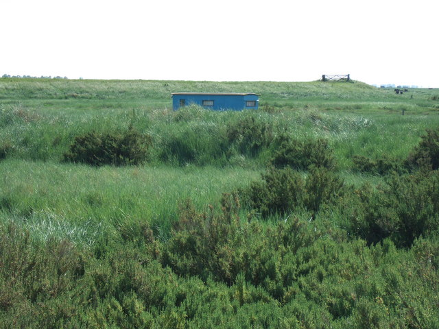 Wildfowler's house boat on the salt marsh