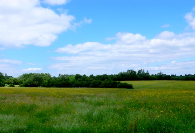 Countryside south of Wootton Bassett