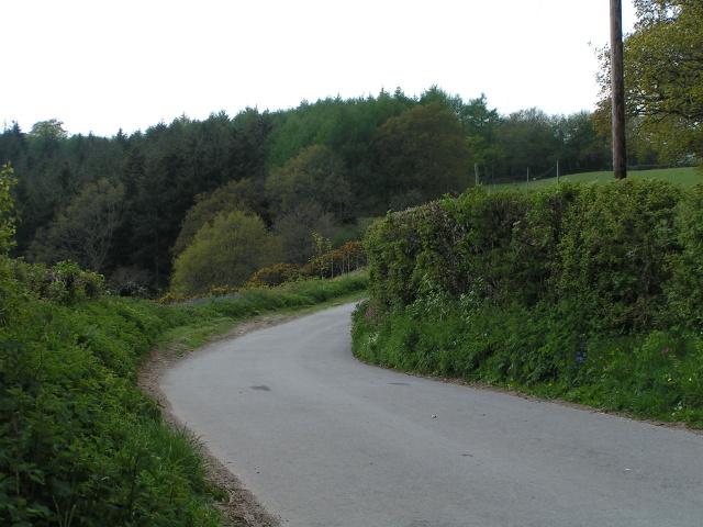 Lane heading west towards Shaftsebury