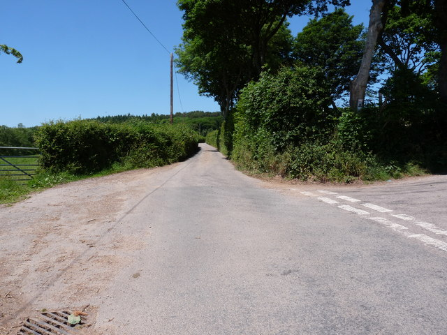 The road which runs from the A361 to Spreacombe with Willingcott Hill to the right