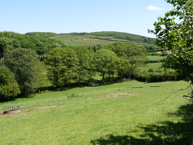 A view from Wood Lane with Stoneyard Wood in the distance