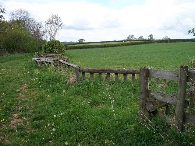 Unusual fence