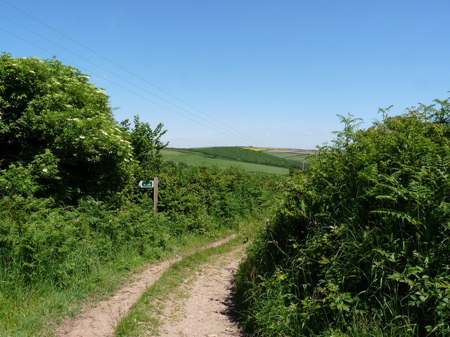 A Footpath to Smallcombe Bridge leaving Wood Lane