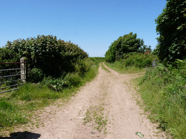 Part of Eastern Down Lane which soon becomes Wood Lane