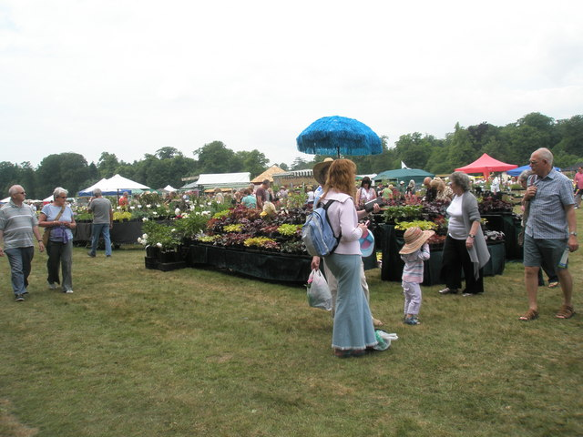 2010 Stansted House Garden Show- plant stall (9)
