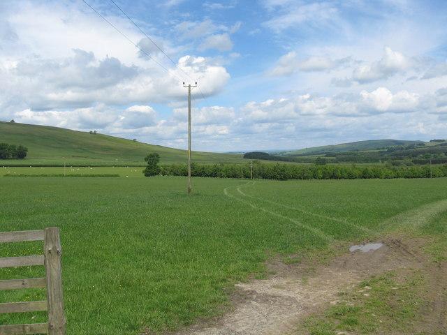 Grasslands near Braidhaugh