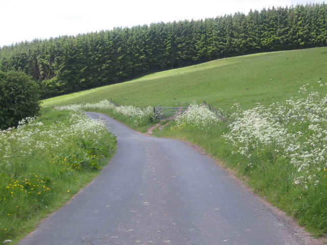 Hill road heading towards Chesters