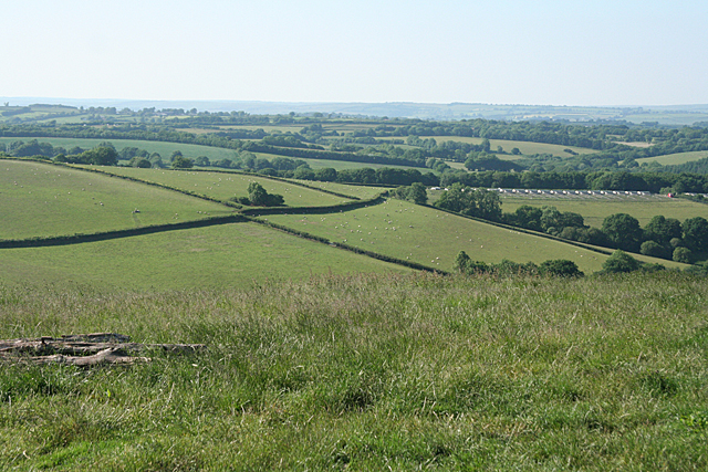 Stoodleigh: above Wapsley