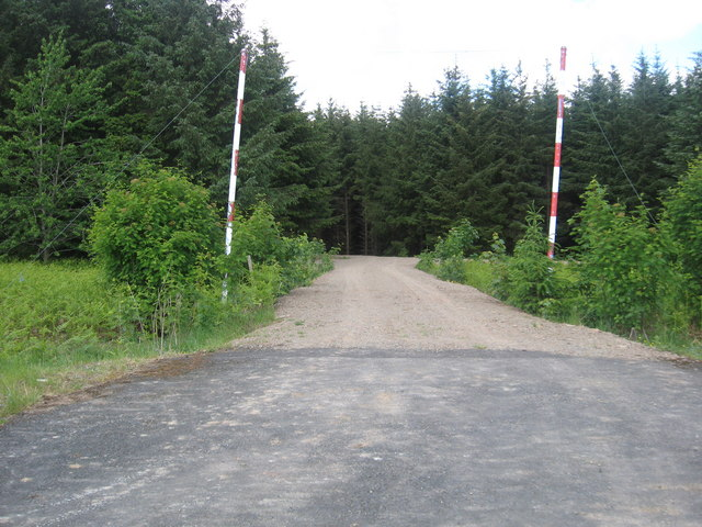 Entrance to Mervinslaw Forest