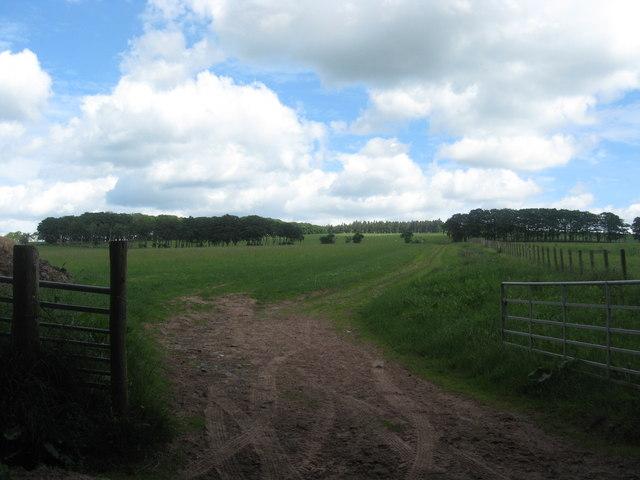 Farmlands at Ruletownhead