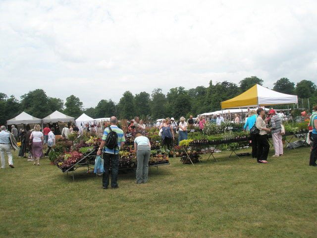 2010 Stansted House Garden Show- plant stall (12)